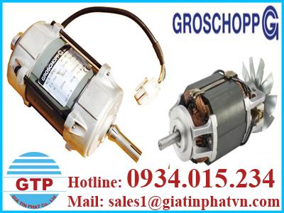 dong-co-dien-groschopp-tai-viet-nam